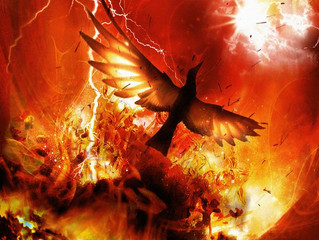 Tale of a phoenix and ashes...