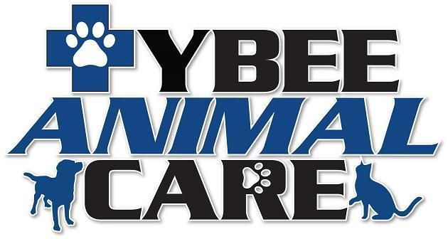 Tybee Animal Care
