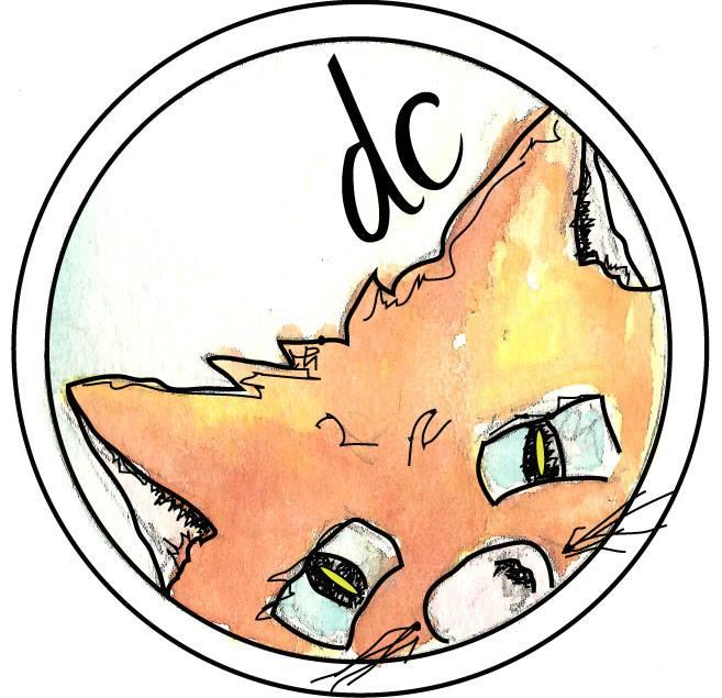 Dreamcat Studio
