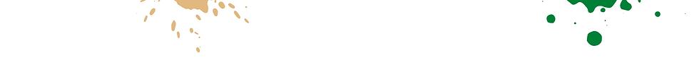 TZ Page Header Banner - Splash Theme 1 (1920X200).png