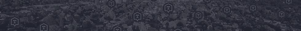 TZ Placeholder Banner (1920X200).png