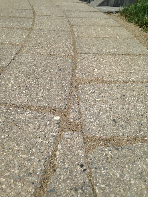 brick paver pathway