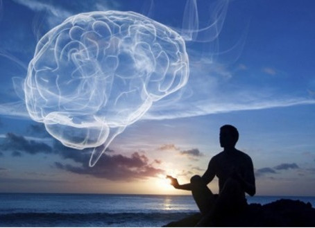 Developing Your Mind to Manifest Using Mindfulness and The Law of Attraction