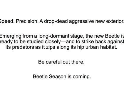 BeetleSeason.jpg