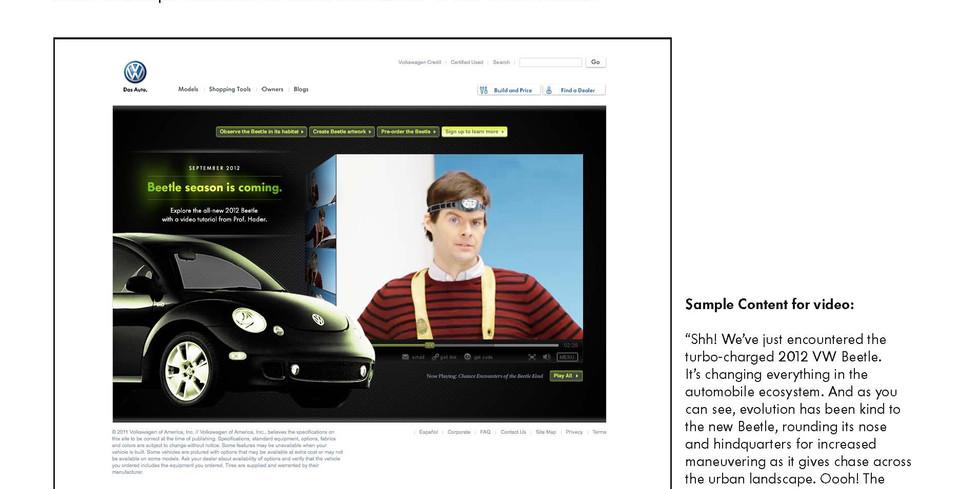 BeetleSeason 10.jpg