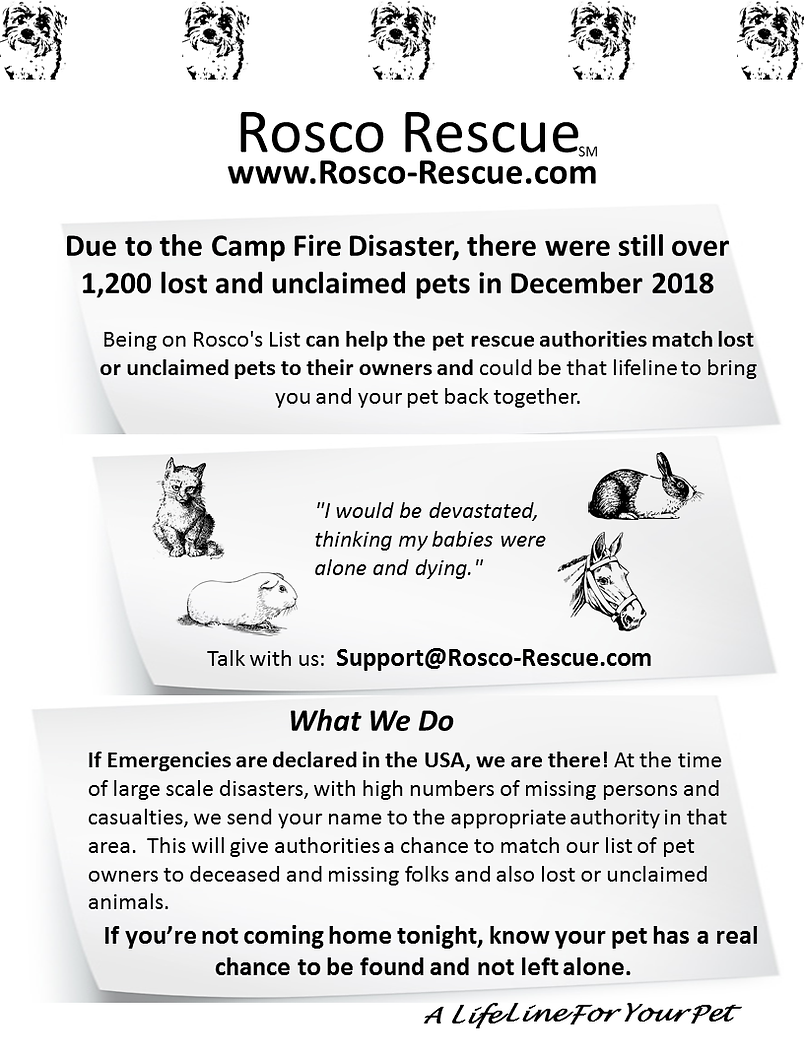Rosco Rescue Update 2019.png