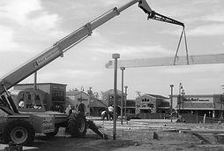 greyscale crane.jpg