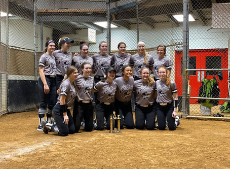 Spano Dome - 1st place - Ohio Wolfpack 04 - Hysong