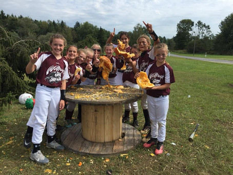 Wolfpack 10u - Wolff | Beverly Bandits Futures | 1st PLACE | 2018