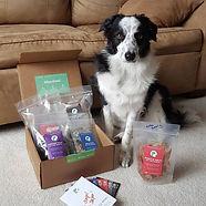 Real Dog Box.jpg
