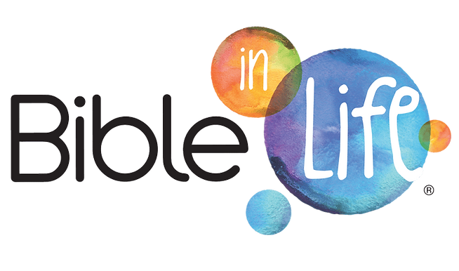 Bible in Life Curriculum