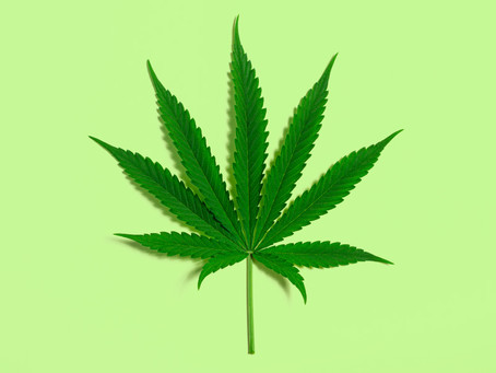 The Impact of Marijuana on Teens