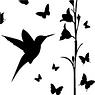 Le Colibri entouré de Papillons va déguster les saveurs des fleurs.