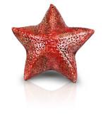 stella marina rossa.jpg