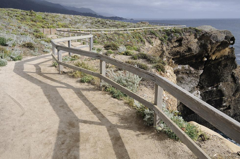 Point Lobos Trail.jpg