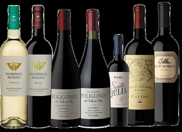 Pack Selección Vinos de Argentina                 (descuento 45%)