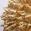 Thumbnail: Frutos, Gold