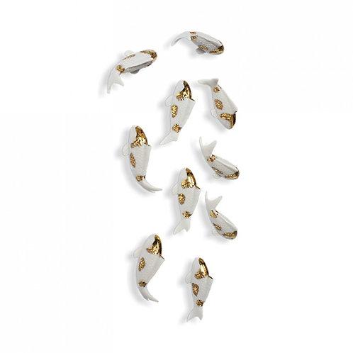 Fish, Gold Spot
