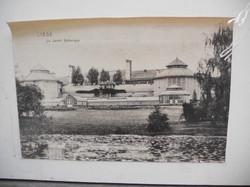 Jardin botanique 058