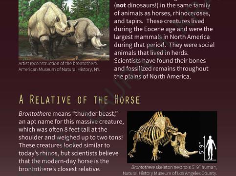 Brontotheres - Paleontology Exhibit