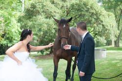 photo de mariage à Lartus