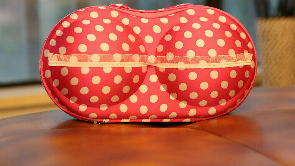 Pink and White Protect Bra Underwear Lingerie Case Travel Bag Storage Box Porta