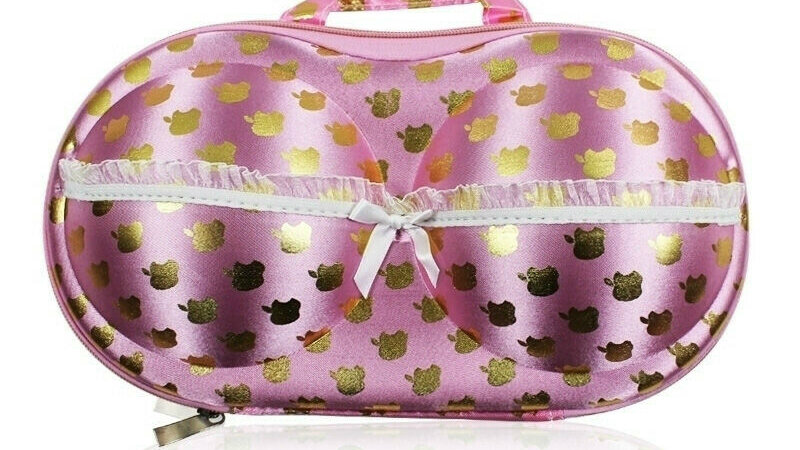 Pink and Gold Protect Bra Underwear Lingerie Case Travel Bag Storage Box