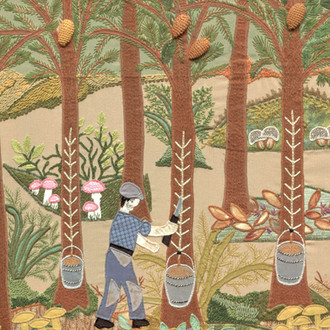 Collecting Pine Tar