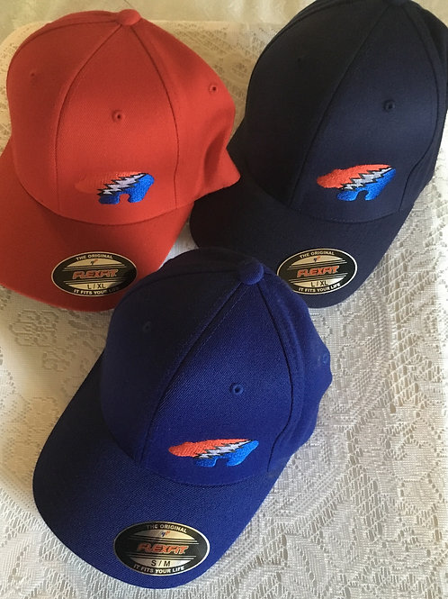 Bears Embroidered Caps