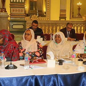 Regional PAFTA Workshop - Cairo, Egypt