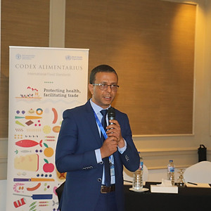 Training Workshop on the Development of National Codex Capacities - Egypt