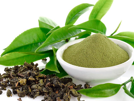 Confira os benefícios do Chá verde para saúde