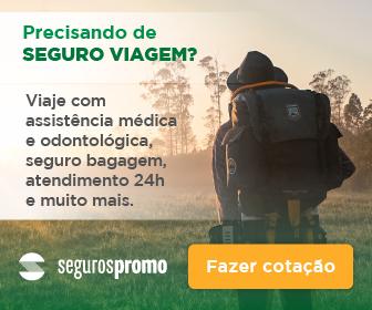 Seguros-Promo-banner_institucional_336x2