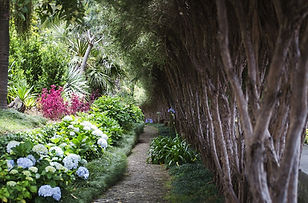 Ilha-da-Madeira-Portugal