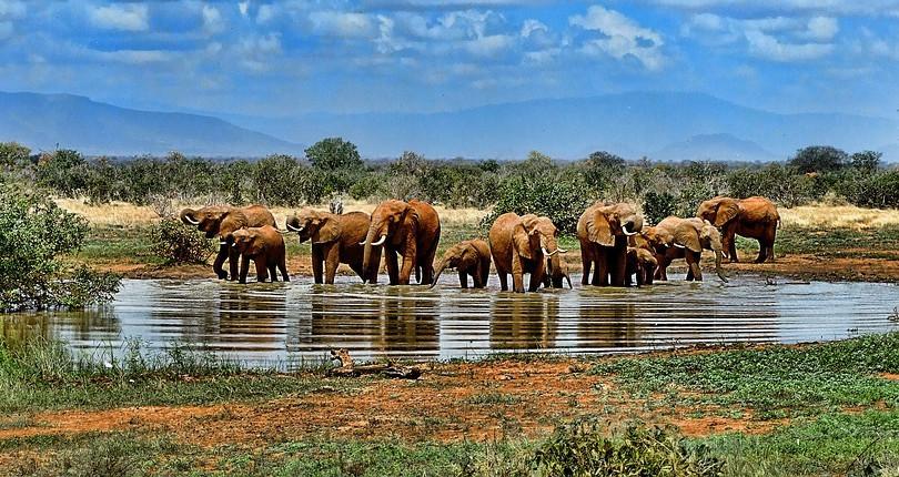 Pacote Maravilhas da África do Sul