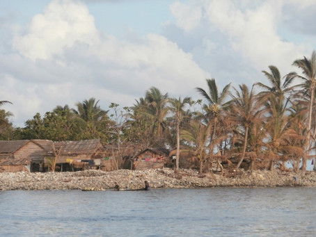 Cyclone Pam: Recovery Recommendations