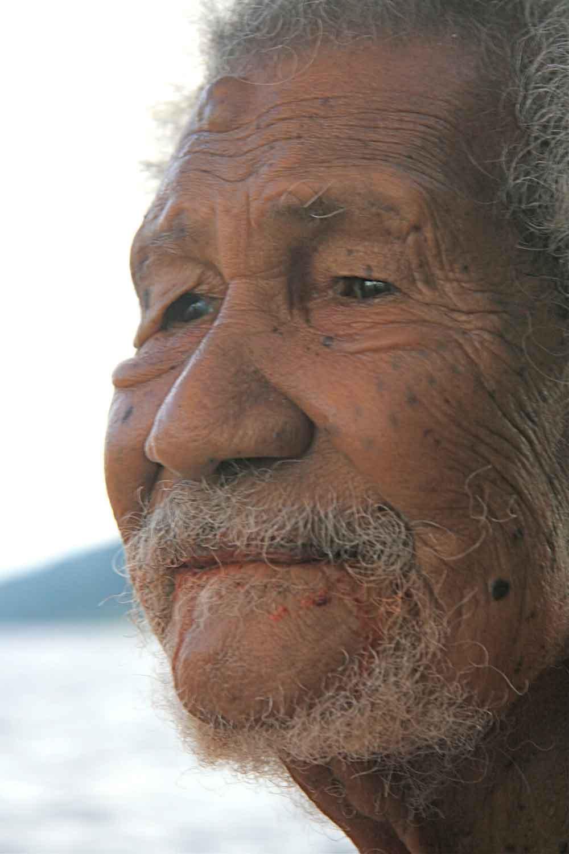 Kaveia 2008