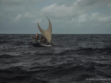 NAVIGATION USING SWELLS AND WAVES