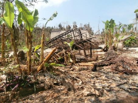 Cyclone Pam's Devastation on Taumako