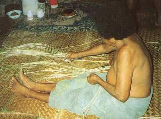 Figure 8. Readying laufala (pandanus leaf, luahala in Hawaiian) for weaving a tepuke sail. The leaves that this woman is rubbing with a spoon have already undergone considerable preparation. Weavers first gather the green leaves, soften them by sliding them over hot coals, and remove their thorns. Next they split the leaves into strips of useable width. Women commonly plait sails in groups, both for cameraderie and to speed the labor. (Photo by H. M. Wyeth)