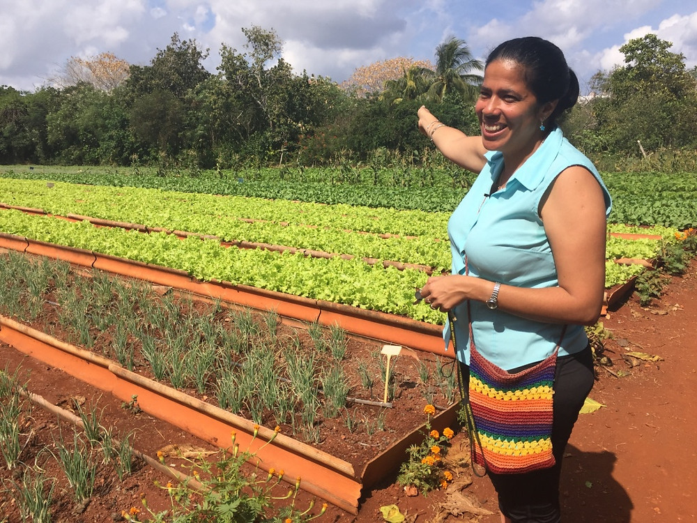 Isis Maria showing a few of the beds at the organic cooperative farm