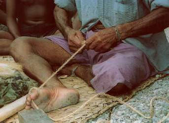 Figure 5. Plaiting coconut husk fibre into kaha (cordage, aha in Hawaiian). A tepuke (voyaging canoe) will require approximately 1500 meters of such cordage to hold it together. (Photo by H. M. Wyeth)