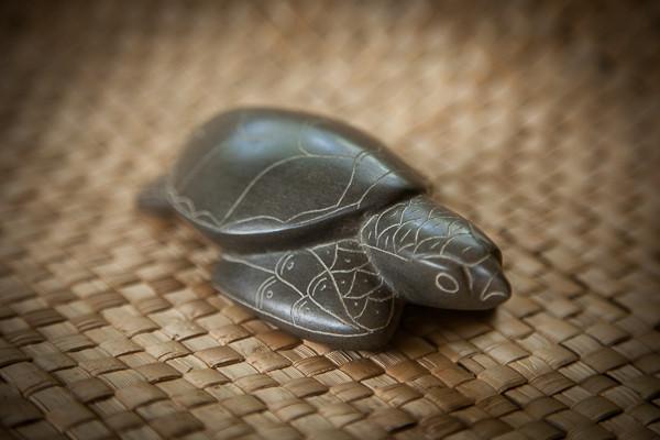 perks_turtle_01