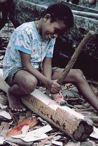 Figure 9. A young boy learns carving in the traditional Polynesian way, by watching and imitating his elders. By the time he is old enough to marry, he will have the skills he needs to make himself a house and a canoe, two necessities of Taumako life. (Photo by H. M. Wyeth)