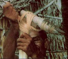Figure 12. Another use for kaha: a master carver lashes his adze blade to a handle. Tying the blade in this way enables him to make the precise adjustments in its angle that carving the interior of a tepuke demands. (Photo by H. M. Wyeth)