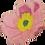 Thumbnail: Flower block - July 2017 (English)