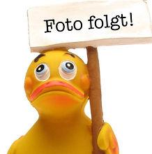 Foto folgt 1.jpg