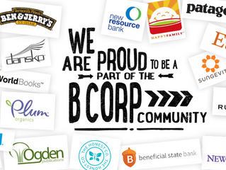 "Committing to ""Doing Well by Doing Good"" – Nia Becomes a B Corp"