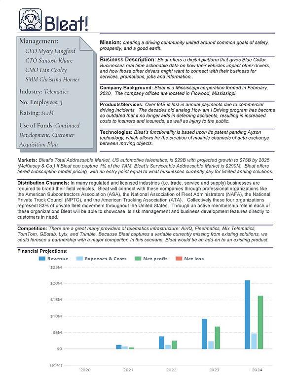 Bleat Executive Summary.docx.jpg