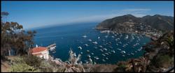 Avalon Bay.jpg